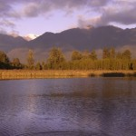 Lake Matheson @ Fox Glacier, New Zealand