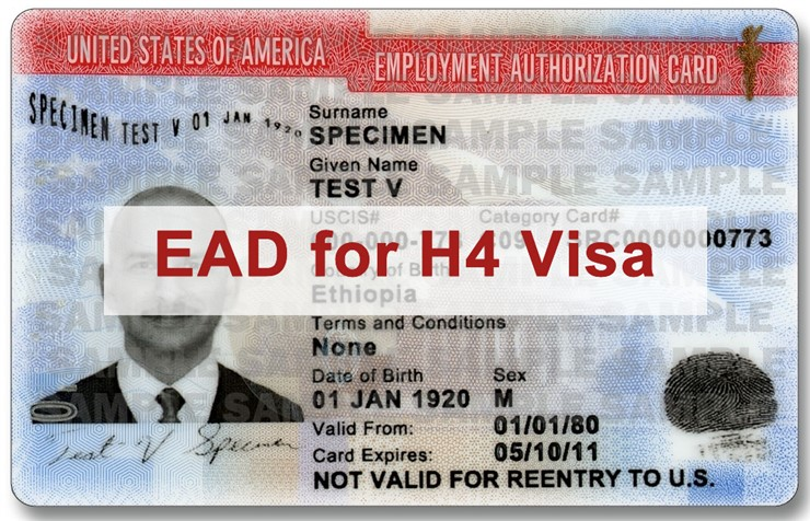 H4 visa work authorization, H4 visa, work permit For H4 visa