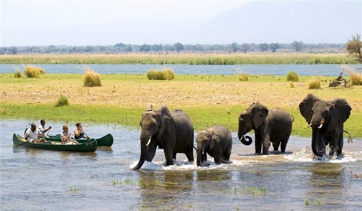 HwangeNational Park, Zimbabwe
