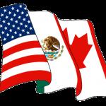 TN Visa, NAFTA LOGO